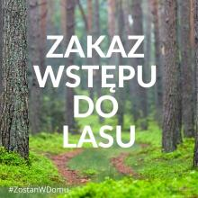 ZAKAZ WSTĘPU DO LASU!